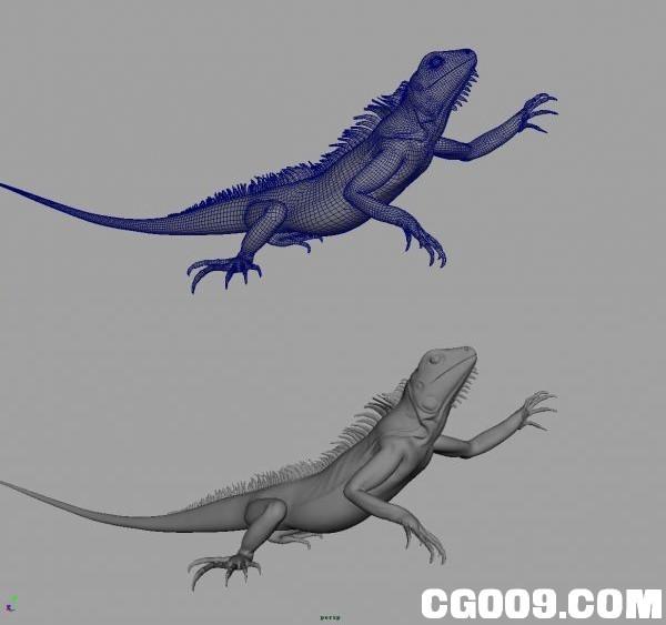 MAYA蜥蜴模型下载