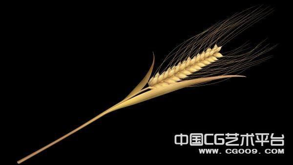 高精写实麦子3D模型下载 带贴图
