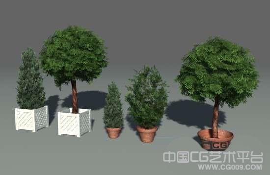一组3D灌木模型集合下载(总共十几套)三