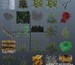 各式各样的花草树木模型合集下载 辣椒 玉米