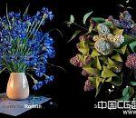 36种高清3d花卉模型合集下载