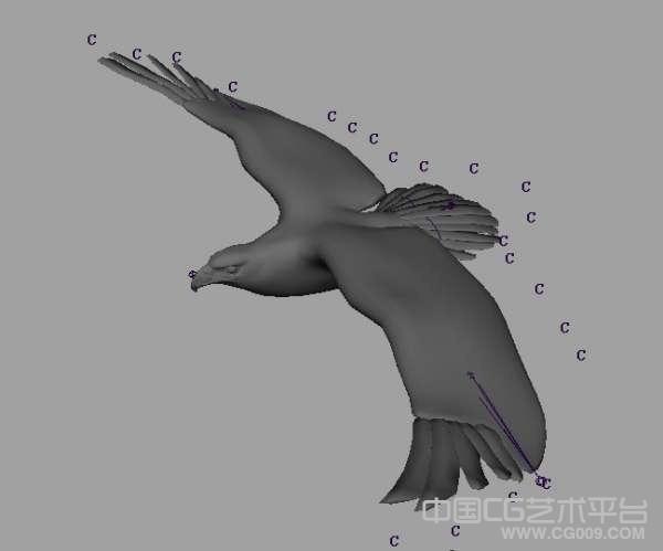 飞翔的大鹰maya绑定模型下载