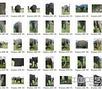 100多张高清大象贴图素材下载
