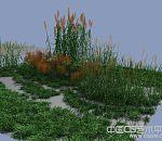 高精花草植物3d模型下载