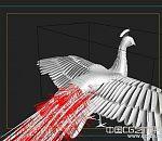 【精品】精细孔雀3d动物模型下载