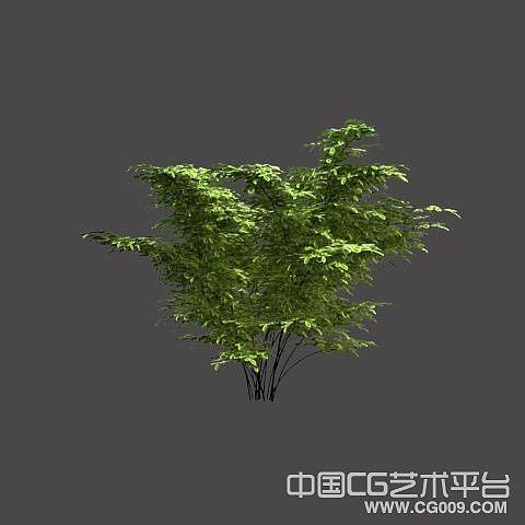 灌木高模_带灯光贴图