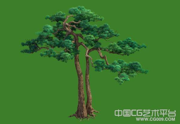[精品松树]非常精细的松树模型下载