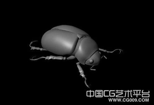 非常精细的金龟子甲壳虫maya模型下载