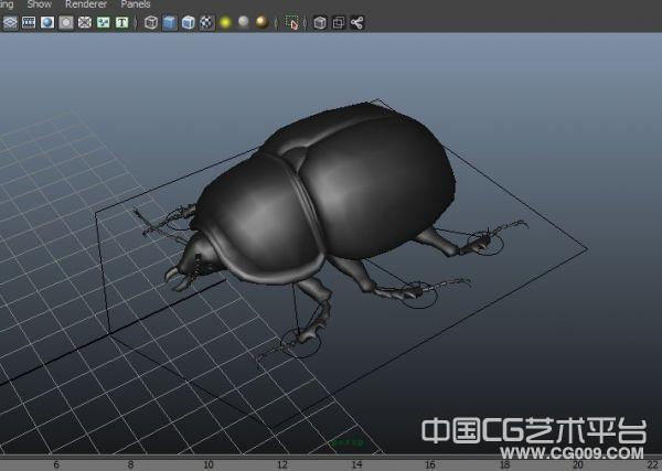 甲壳昆虫maya写实模型下载