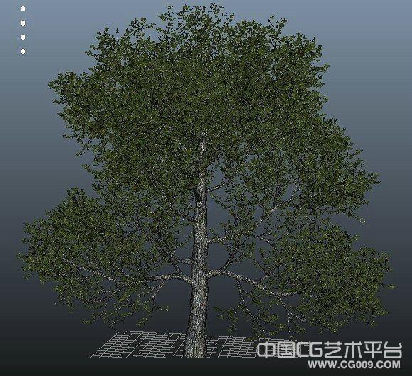 大型风景树木模型下载