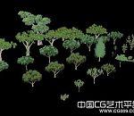 一批游戏里面的树木模型合集下载