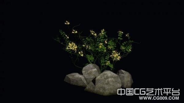 石头中的金银花植物模型下载