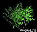竹子模型下载