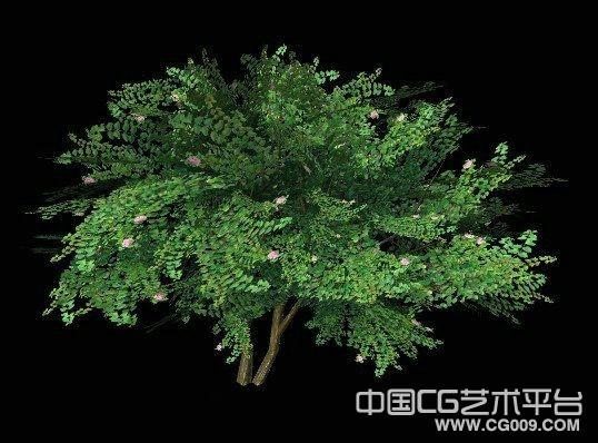 风景之物、灌木模型下载