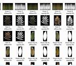 各种各样室内植物模型合集下载
