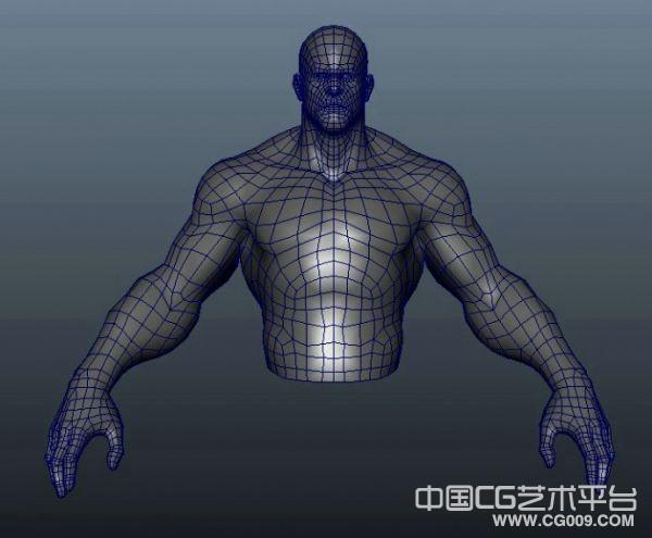 写实半身男人体maya模型下载,布线很好