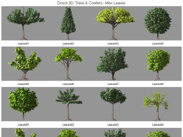 一批经典的3d树木模型下载  带贴图