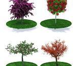 一批景观树木模型下载  带完整贴图
