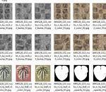 精品3d石头场景模型带爬行植物模型下载