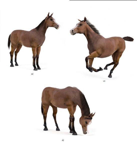 2匹好马3d高品质模型下载 带动作