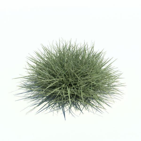 一堆草地3d模型下载  有高清渲染图