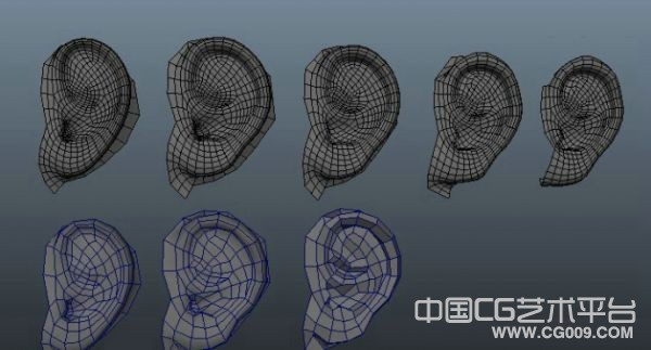 人物耳朵模型下载 有布线制作多个步骤模型