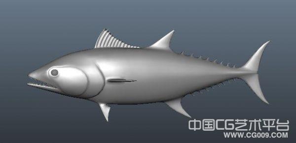 maya写实鱼模型下载 3d鱼模型