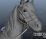 古代骑马的战士将军期战马动作模型古骑兵maya绑定