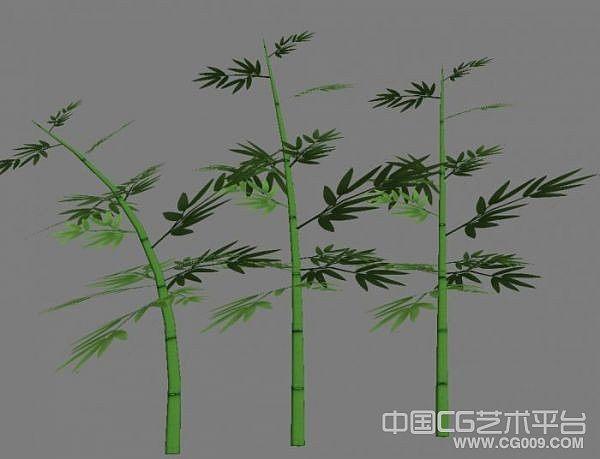 斑竹嫩竹竹叶3d模型下载