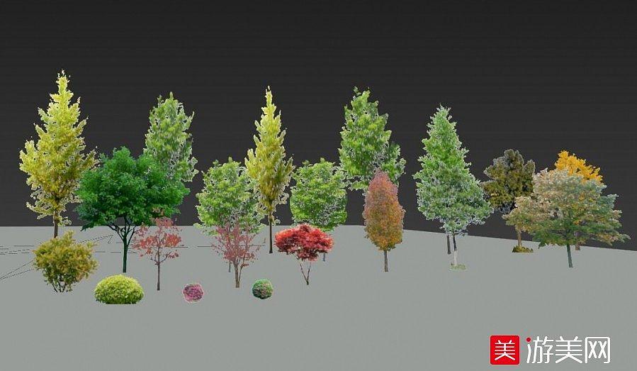 一批真实的树木植物SKP模型下载